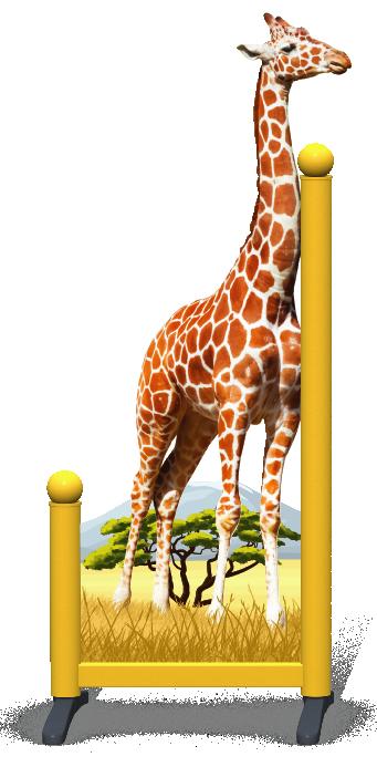 Wing > Giraffe