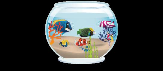Fillers > Fish Bowl Filler > Tropical Fish