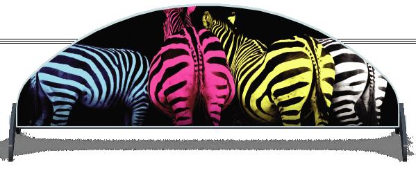 Fillers > Half Moon Filler > Colourful Zebras