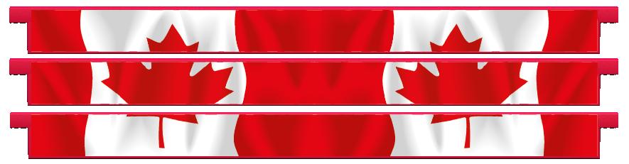 Planks > Straight Plank x 3 > Canadian Flag