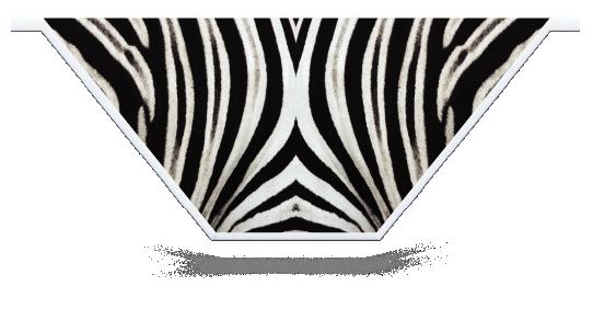 Fillers > V Filler > Zebra Skin