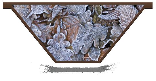 Fillers > V Filler > Winter Leaves