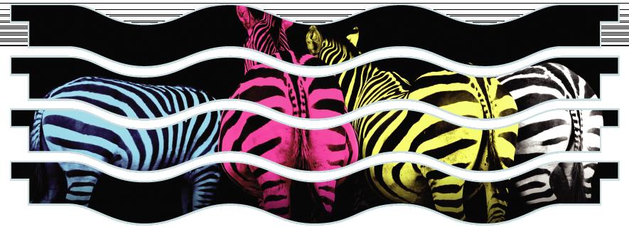 Planks > Wavy Plank x 4 > Colourful Zebras