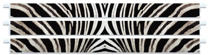 Planks > Straight Plank x 3 > Zebra Skin