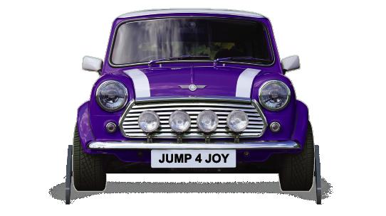 Fillers > Mini Filler > Purple Mini
