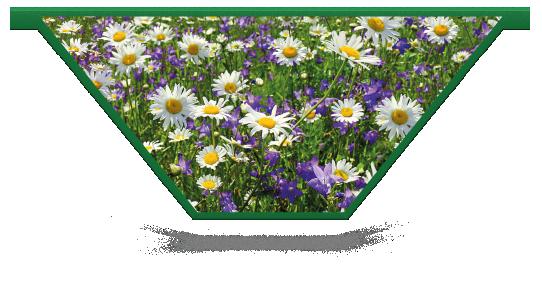 Fillers > V Filler > Spring Meadow
