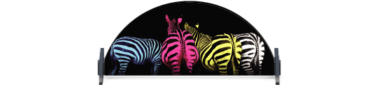 Fillers > Half Round Filler > Colourful Zebras