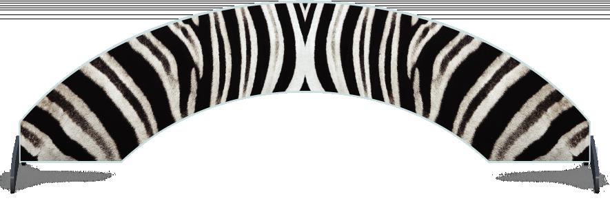 Fillers > Arch Filler > Zebra Skin