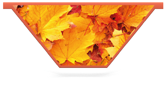 Fillers > V Filler > Autumn Leaves