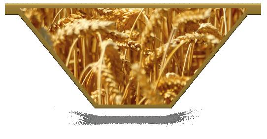 Fillers > V Filler > Wheat Field
