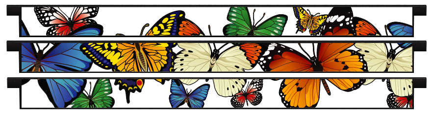 Planks > Straight Plank x 3 > Butterflies