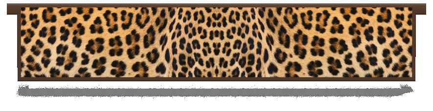Fillers > Hanging Solid Filler > Leopard Skin