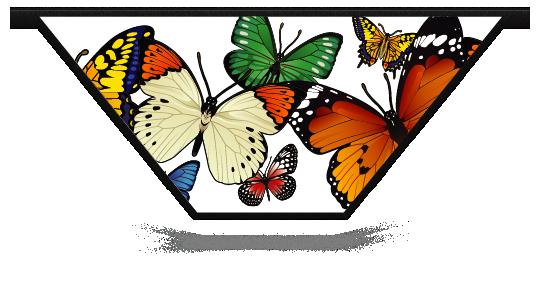 Fillers > V Filler > Butterflies
