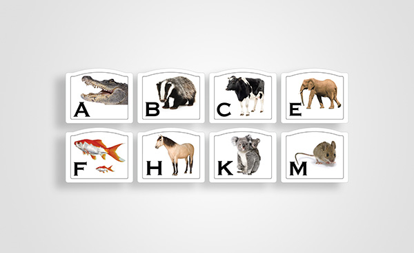 Animal Dressage Markers - 20x40