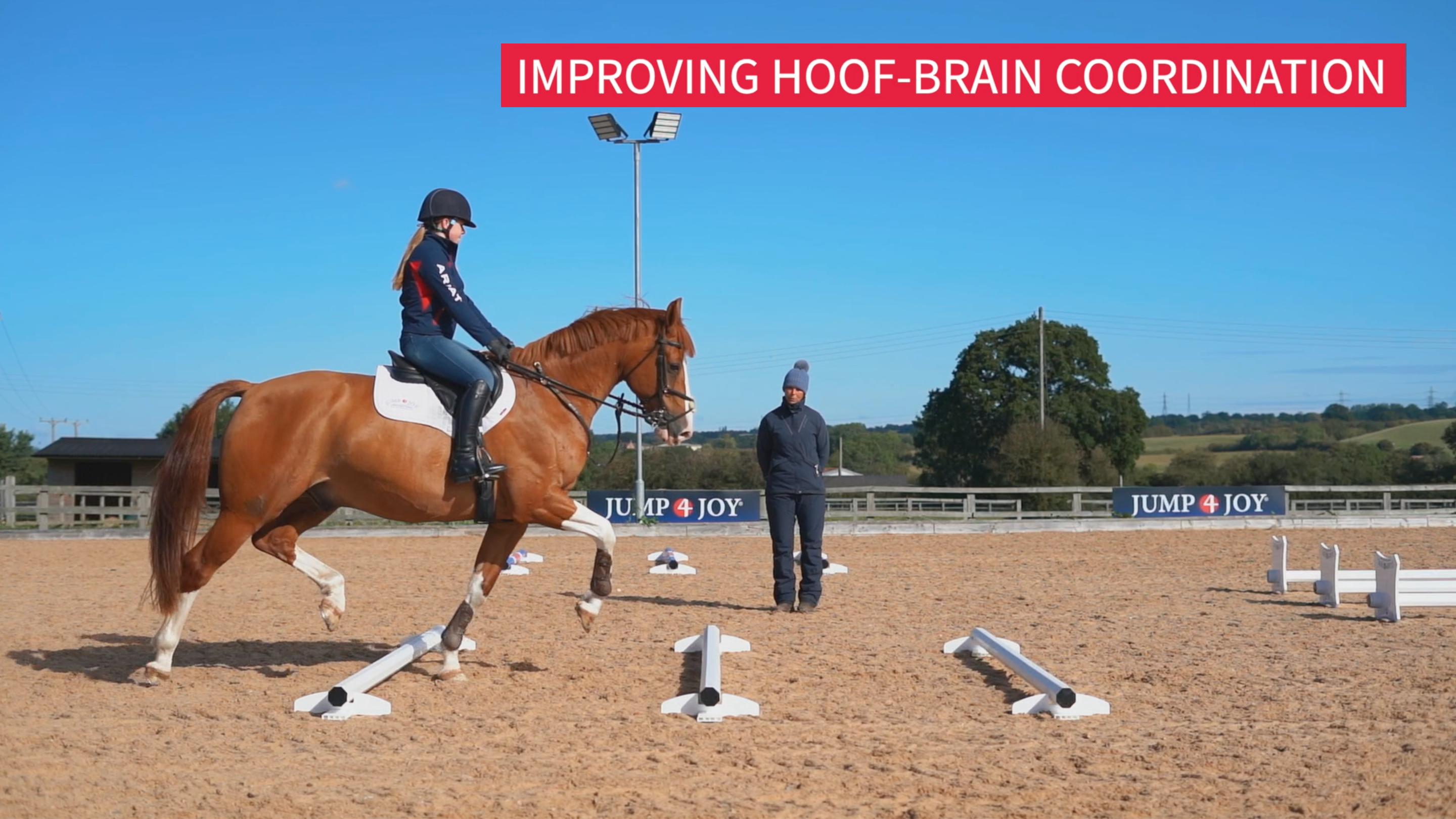 Improving Hoof-Brain Coordination
